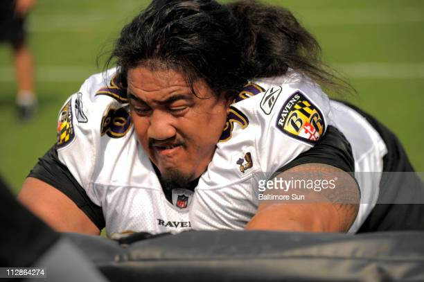 Baltimore Ravens nose tackle Kelly Talavou hits the equipment during training camp at McDaniel College, Tuesday, July 28 in Baltimore, Maryland.