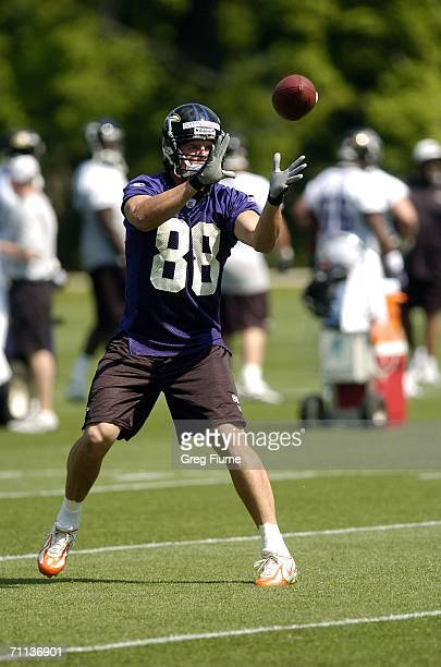 Baltimore Ravens Quinn Sypniewski catches a pass during the team minicamp June 6, 2006 at the Ravens practice facility in Owings Mills, Maryland.