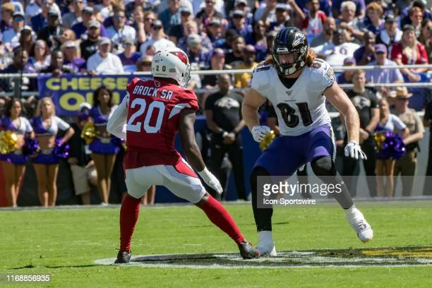 Baltimore Ravens tight end Hayden Hurst in action during the National Football League game between the Arizona Cardinals and Baltimore Ravens on...