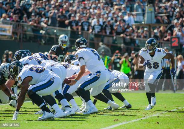 Baltimore Ravens Tightend Vince Mayle is in motion as Baltimore Ravens quarterback Joe Flacco gets ready to hand the ball off during the regular...