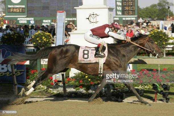 Bernardini with jockey Javier Castellano crosses the finish line to win the 131st Preakness Stakes at Pimlico Race Course in Baltimore Maryland 20...