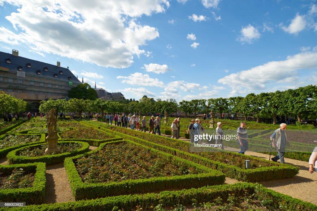Bamberg Rose Garden : Stock Photo
