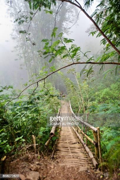 bamboo bridge, flores - flores indonesia fotografías e imágenes de stock
