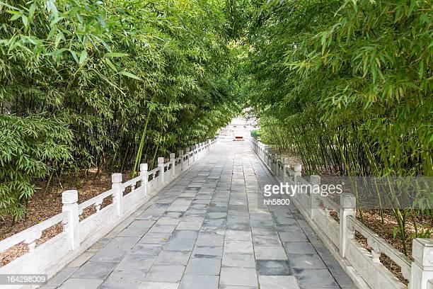 竹林 Road