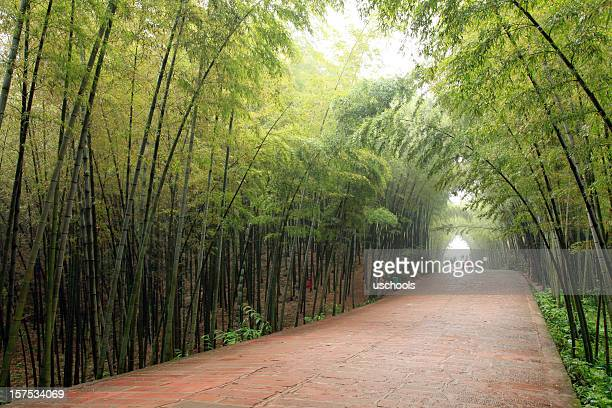 Bamboo Forrest and Red Sand Stone Path