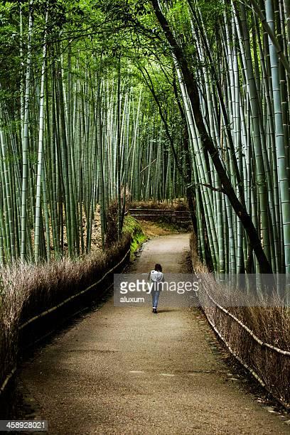 bamboo groves of sagano kyoto japan - arashiyama stock pictures, royalty-free photos & images