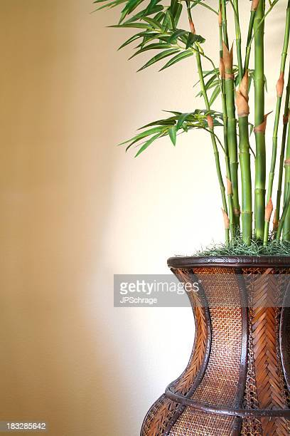 bamboo in basket - bamboo plant stock photos and pictures