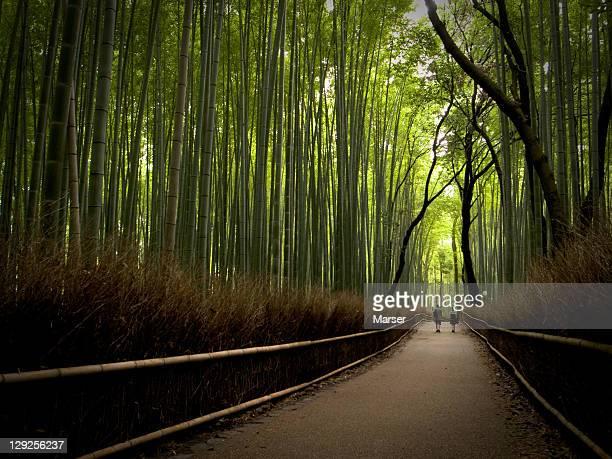 Bamboo path near Arashiyama