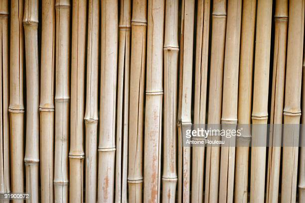 bamboo - bamboo material stock photos and pictures