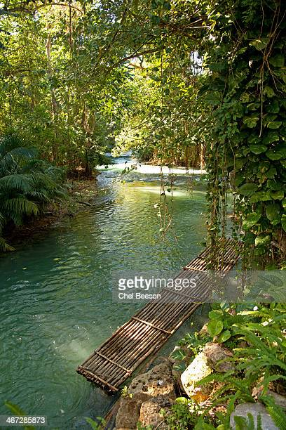 bamboo river raft - montego bay stock pictures, royalty-free photos & images
