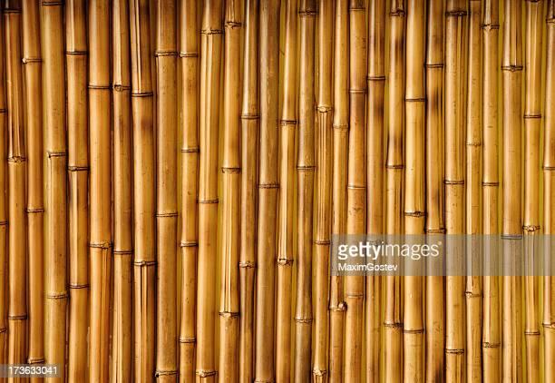 Bambus-Struktur