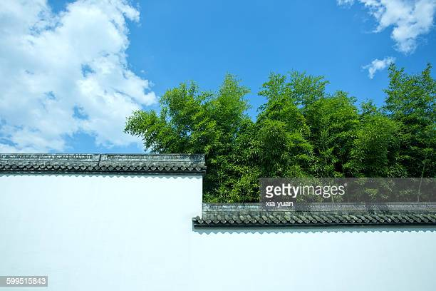 Bamboo with white wall in Confucian temple