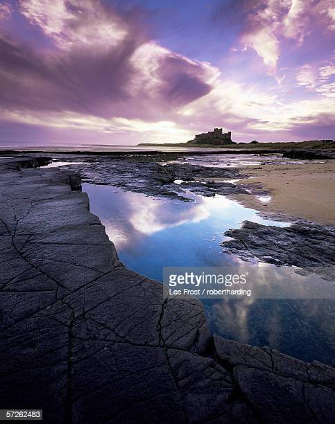 bamburgh castle at dawn, northumberland, england, united kingdom, europe - northumberland stock pictures, royalty-free photos & images