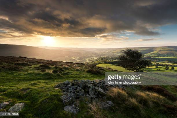 bamford sunrise with an old hawthorn tree. english peak district. uk. europe. - hawthorn,_victoria stock pictures, royalty-free photos & images