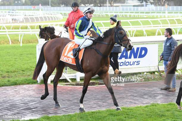 Bam's On Fire ridden by Jamie Kah returns to the mounting yard after winning the Elvis Thurgood 40th Anniversary Cup at Caulfield Racecourse on April...