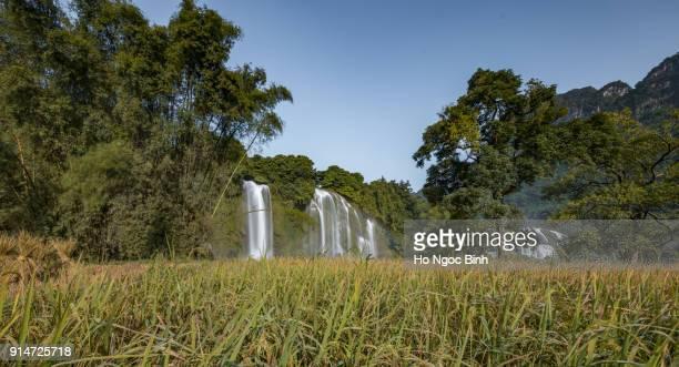 Ban Gioc Waterfall - Detian waterfall