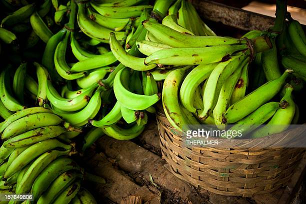 banana plantain in a pallets - banana tree stock pictures, royalty-free photos & images