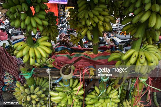 A banana vendor naps at a stall at Orussey Market in Phnom Penh Cambodia on Friday July 27 2018 Cambodian Prime MinisterHun Senextended his...