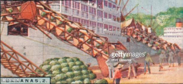 'Bananas 2 Loading a Steamship Costa Rica' 1928 From Player's Cigarettes Products of the World A Series of 50 [John Player Sons London 1928] Artist...