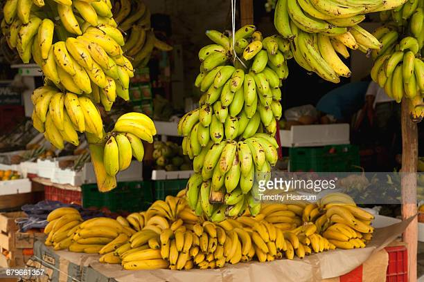 bananas and plantains at a produce stand - timothy hearsum stockfoto's en -beelden