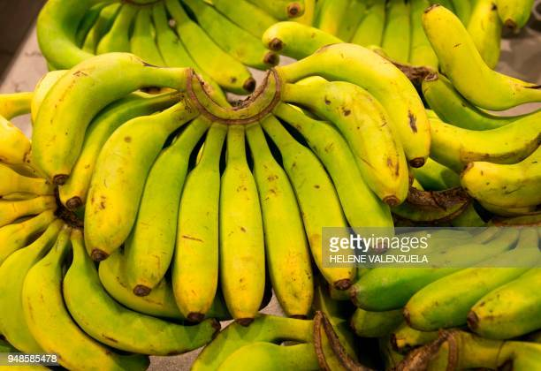 Bananas are pictured at the fruit and vegetable department of an 'O Marche' supermarket in SaintFrancois on the French overseas territory of...