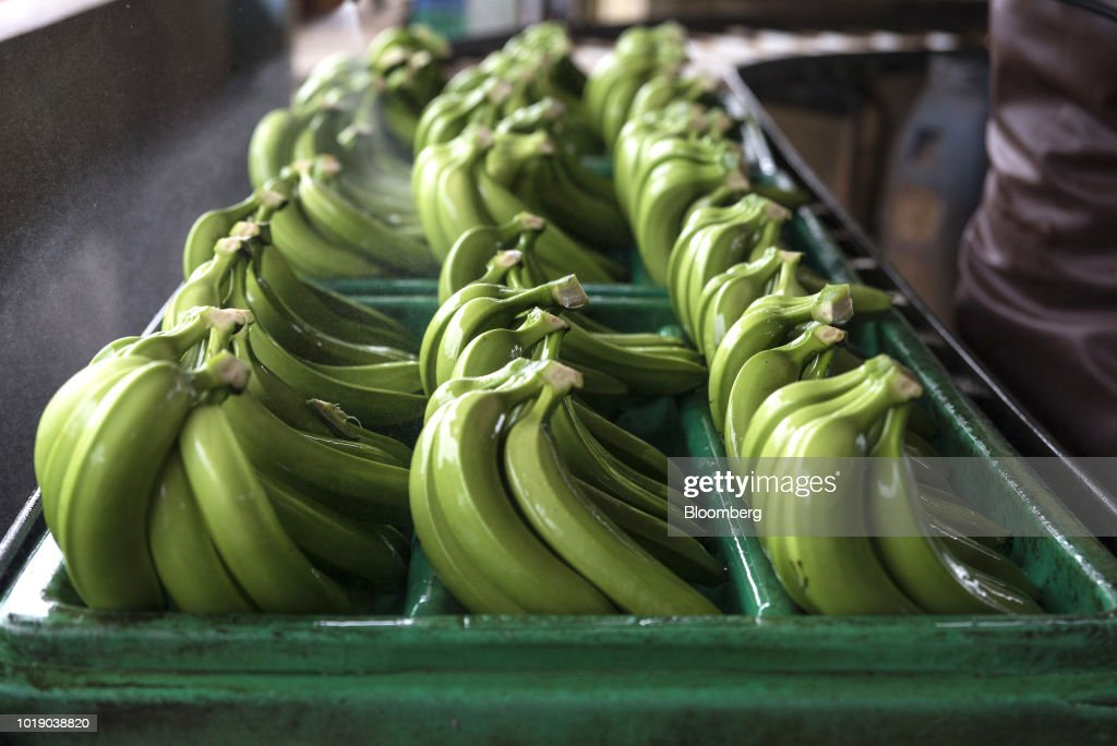 Operations At Produce Packing Facilities As Bolivian Economy Set To Expand