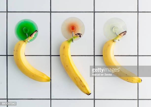 Bananas on display