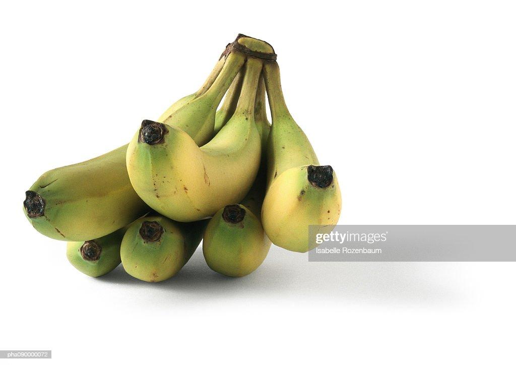 Bananas or plantain, white background : Stockfoto