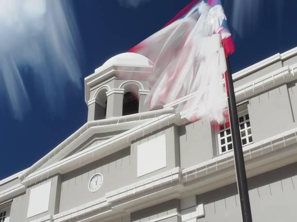 Bandera Viva de San Juan