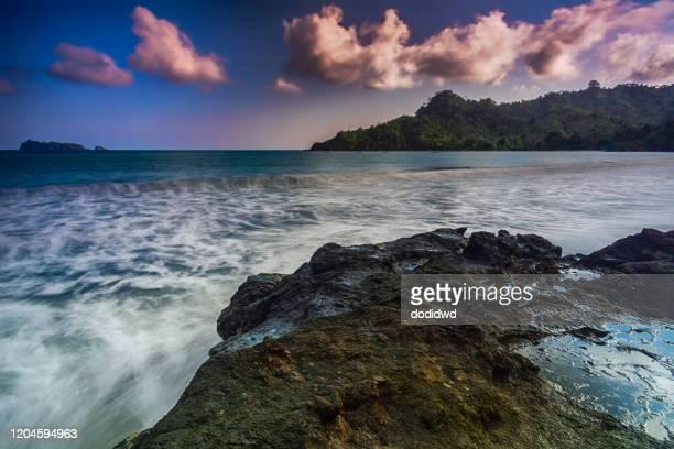 bandialit beach, meru betiri national park, jember, indonesia - meru filme stock-fotos und bilder