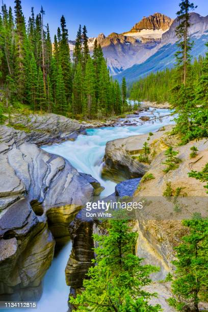 banff national park in alberta canada - canadian rockies stock pictures, royalty-free photos & images