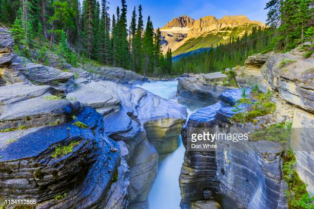 banff national park in alberta canada - banff national park stock pictures, royalty-free photos & images