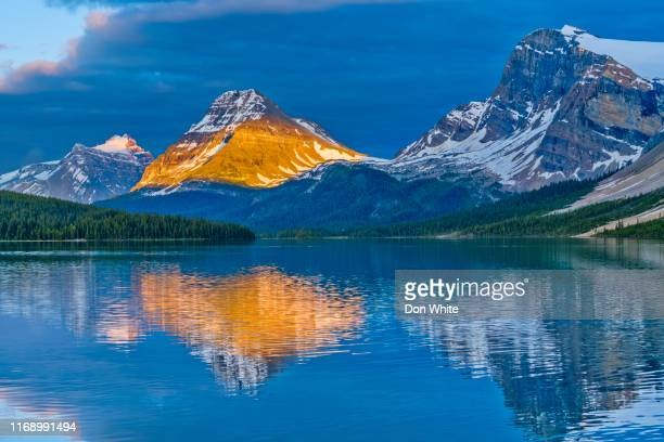 banff national park in alberta canada - bow river stock pictures, royalty-free photos & images