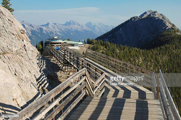 banff skywalk - sulphur mountain stock pictures, royalty-free photos & images