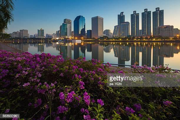 Bangkok City Park with Reflection of Skyline