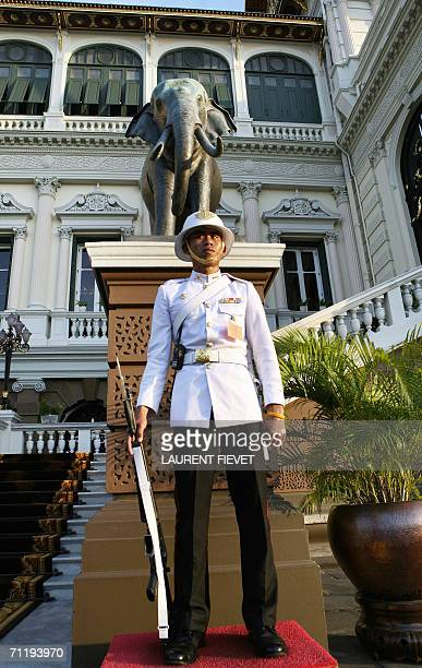 Royal guard from the Thai palace stands in front of the Grand Palace prior to arrival of members from royal families in Bangkok, 13 June 2006. Royals...