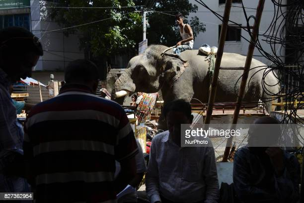 A Bangladeshi manride on his elephant through a street at Kawranbazar in Dhaka Bangladesh on August 07 2017 Estimates say there are about 200 wild...