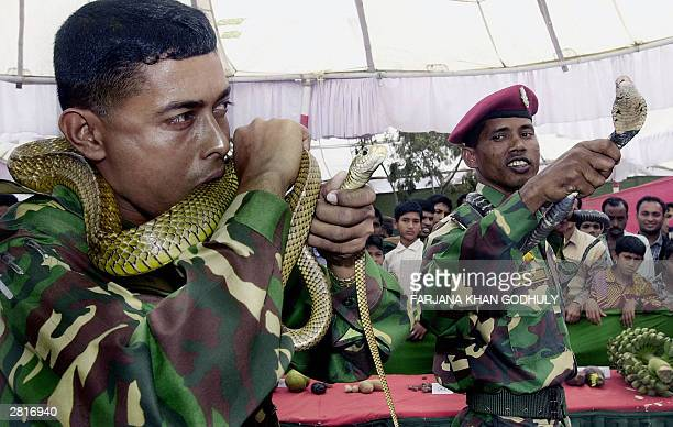 Bangladeshi paratrooper bites a snake as one of his comrades holds up another snake during a public show during which soldiers demonstrated various...