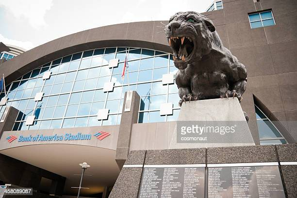 bank of america stadium, charlotte - charlotte north carolina stock photos and pictures