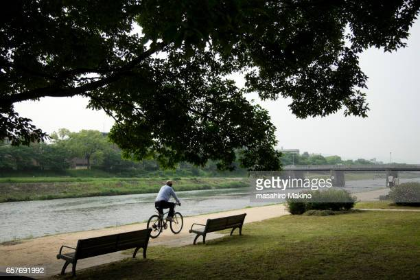bank of kamo river in the morning - riverbank stock pictures, royalty-free photos & images