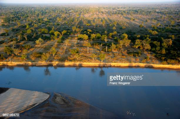 banks of the luangwa river, mobane forest in the morning light, aerial view, south luangwa national park, zambia - south luangwa national park stock pictures, royalty-free photos & images