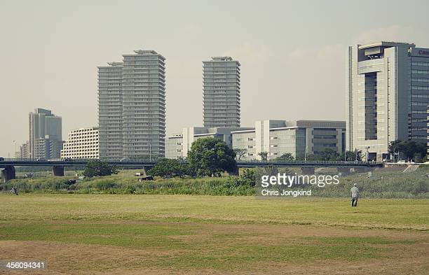 Banks of the Tamagawa River