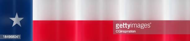 Banner Flag of Texas