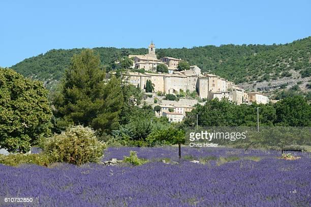banon & lavender field provence - アルプドオートプロバンス県 ストックフォトと画像