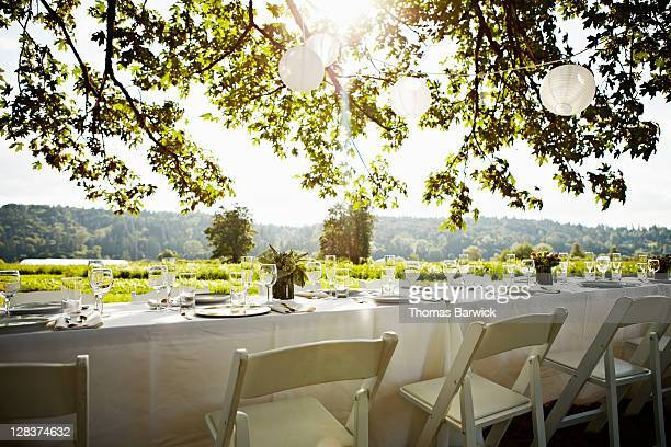 Banquet table set for dinner outside under tree