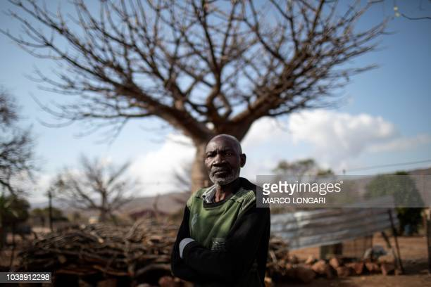 Baobab fruits harvester Aaron Muchengeni poses in front of a baobab tree in the village of Muswodi Dipeni in the Limpopo Province near Mutale on...