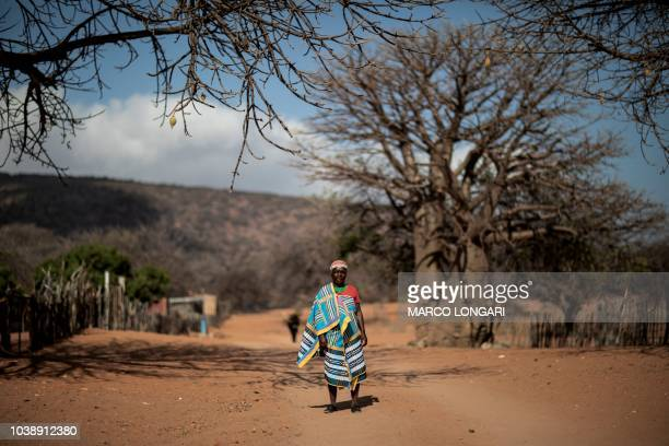 Baobab fruits harvester Elisah Paswana poses under a baobab tree in the village of Muswodi Dipeni in the Limpopo Province near Mutale on August 28...