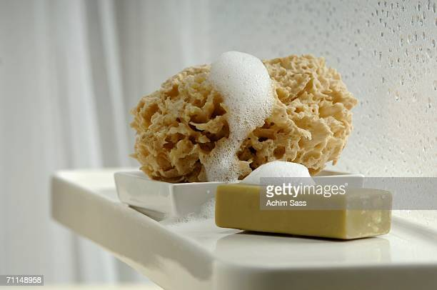 Bar of soap and sponge in bathroom