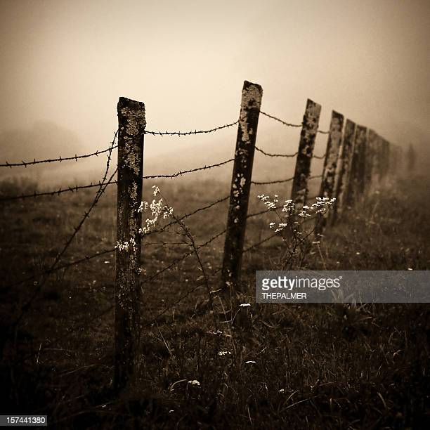 barb wire fence in north carolina