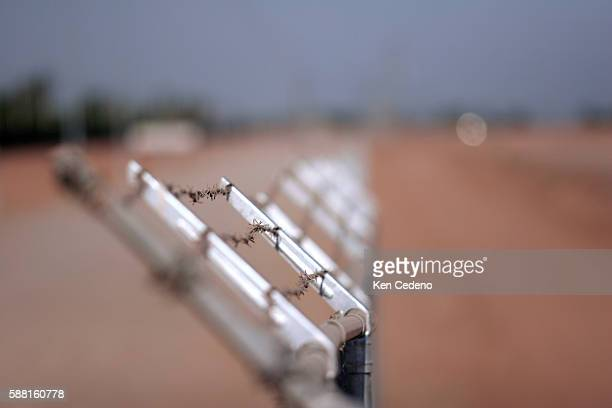 A Barb wire fence lines the border near the town of Yuma | Location near Yuma Arizona USA